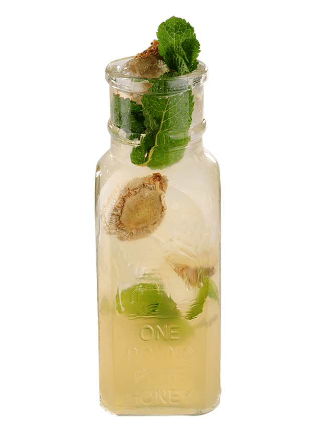 Ginger Beer Cooler