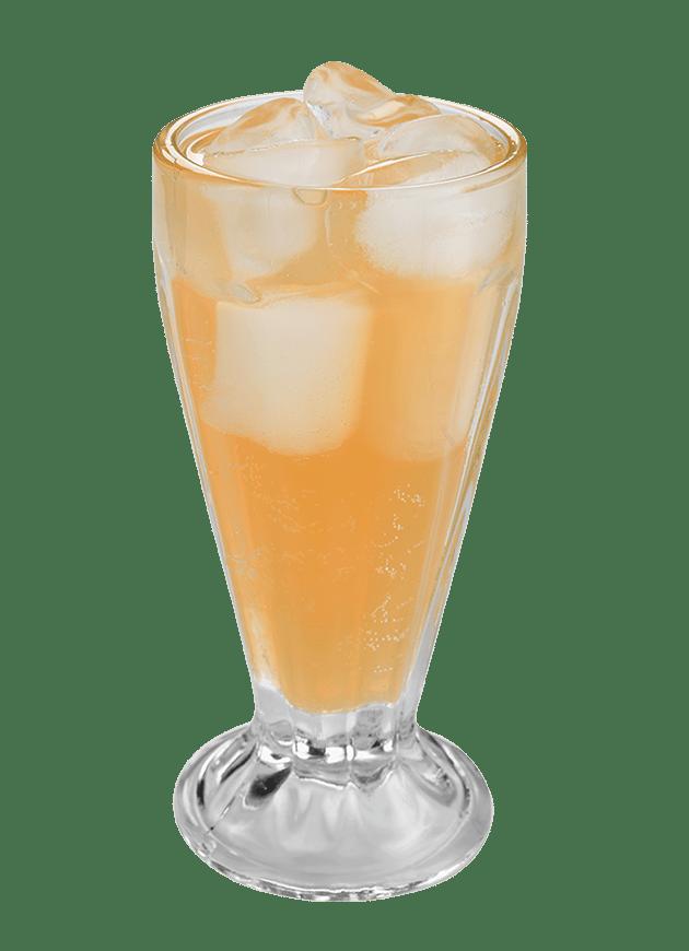 Peach Apricot Spritzer